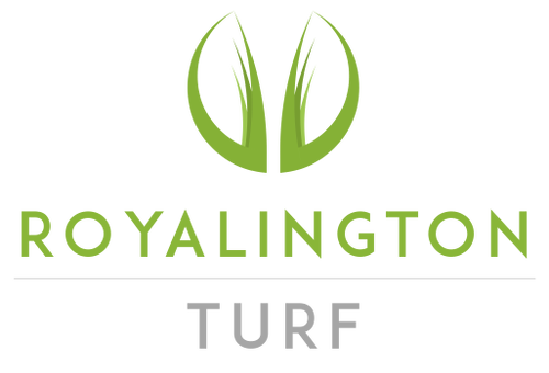 Royalington Turf